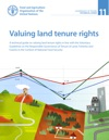 Valuing Land Tenure Rights A Technical Guide On Valuing Land Tenure Rights In Line With The Voluntary Guidelines On The Responsible Governance Of Tenure Of Land Fisheries And Forests In The Context Of National Food Security