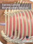 Equine Lower Respiratory Disease