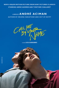 Call Me by Your Name Summary