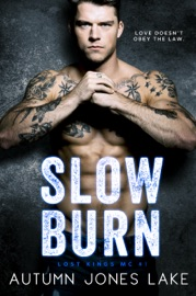 Slow Burn PDF Download