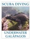 Scuba Diving - Underwater Galpagos