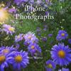 Scott Weaver - iPhone Photographs  artwork