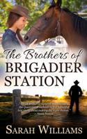 Sarah Williams - The Brothers of Brigadier Station artwork
