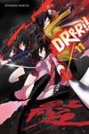 Durarara Vol 11 Light Novel