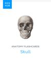Anatomy flashcards: Skull