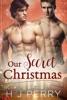 Our Secret Christmas