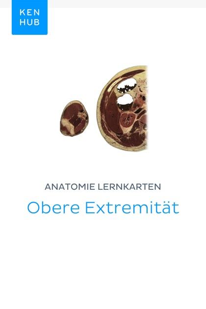 Anatomie Lernkarten: Obere Extremität by Kenhub on Apple Books