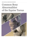 Common Bony Abnormalities Of The Equine Tarsus