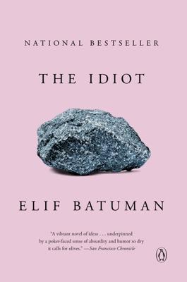 Elif Batuman - The Idiot book