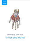 Anatomy flashcards: Wrist and Hand