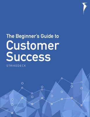 The Beginner's Guide to Customer Success