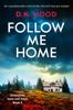 D.K. Hood - Follow Me Home artwork