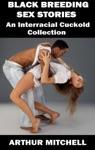 Black Breeding Sex Stories An Interracial Cuckold Collection