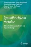 Cyanidioschyzon Merolae