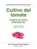 Gonzalo PГ©rez MeliГЎn - Cultivo del tomate ilustraciГіn