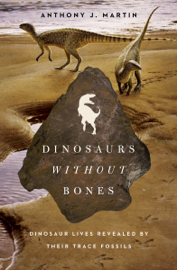 Dinosaurs Without Bones book