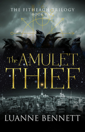 The Amulet Thief book