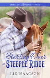 Starting Over at Steeple Ridge PDF Download