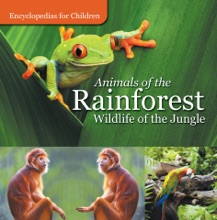 Animals Of The Rainforest  Wildlife Of The Jungle  Encyclopedias For Children