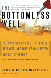 The Bottomless Well book