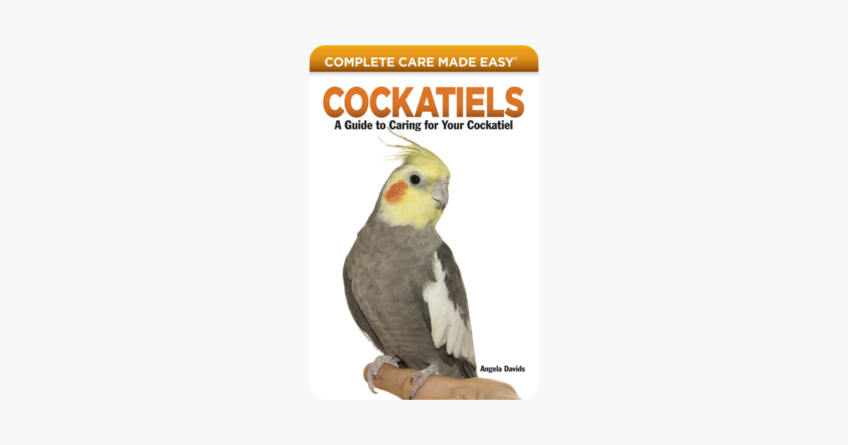 Cockatiels - Angela Davids