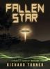 Richard Turner - Fallen Star  artwork
