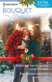 Bijzonder kerstcadeau ; Een winterromance