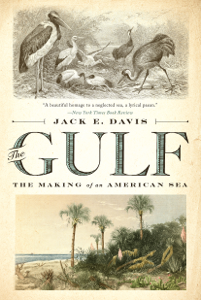 The Gulf: The Making of An American Sea Book Cover