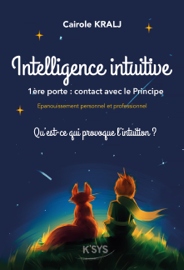 Intelligence Intuitive, 1ère porte : contact avec le Principe