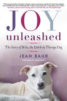 Jean Baur & Aimee Scott - Joy Unleashed artwork