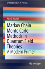 Markov Chain Monte Carlo Methods in Quantum Field Theories