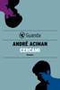 André Aciman - Cercami artwork
