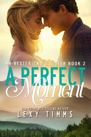 A Perfect Moment book