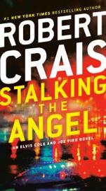 Download Stalking the Angel