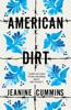 Jeanine Cummins - American Dirt artwork