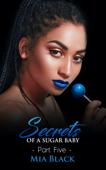 Secrets Of A Sugar Baby 5