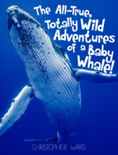 The All-True, Totally Wild Adventures Of A Baby Whale
