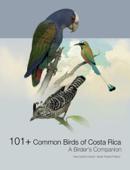 101+ Common Birds of Costa Rica