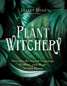 Plant Witchery Book Cover
