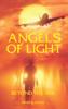 Mark Vance - Angels of Light - Beyond The Veil kunstwerk