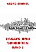 Essays und Schriften, Band 3
