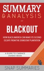 Summary Analysis Of Blackout
