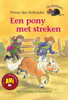 Vivian den Hollander - Een pony met streken artwork