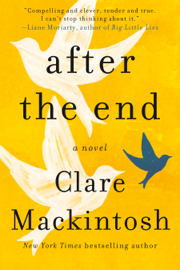 After the End - Clare Mackintosh book summary
