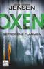 Jens Henrik Jensen - Oxen. Gefrorene Flammen Grafik