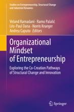 Organizational Mindset Of Entrepreneurship
