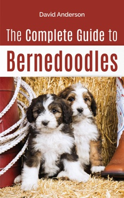 The Complete Guide to Bernedoodles: Everything You Need to Know to Successfully Raise Your Bernedoodle Puppy!