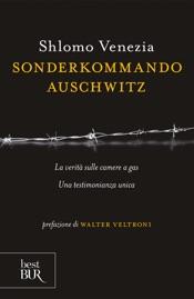 Download Sonderkommando Auschwitz