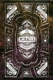 53 Miracle Principles
