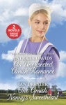 An Unexpected Amish Romance And The Amish Nannys Sweetheart